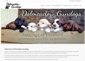 A screen shot of Dolmeadow Gundogs website